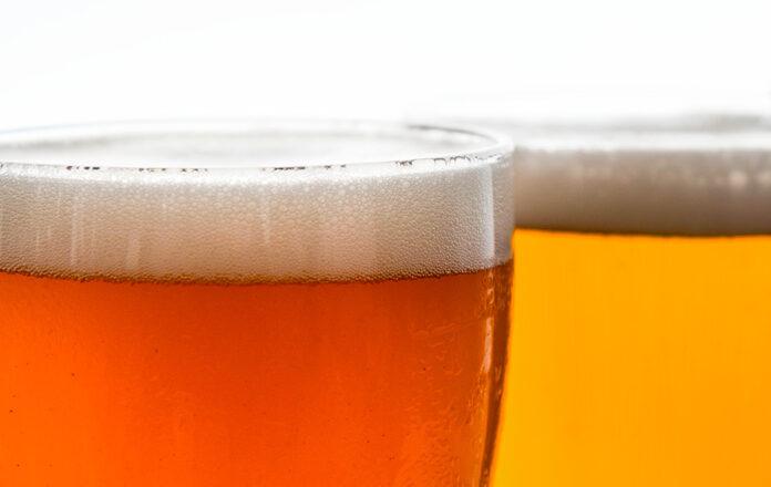 beer snob
